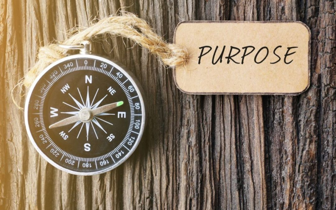 Purpose is not a luxury.